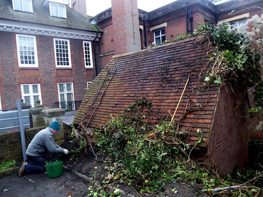 MMF Project, Gardening Club